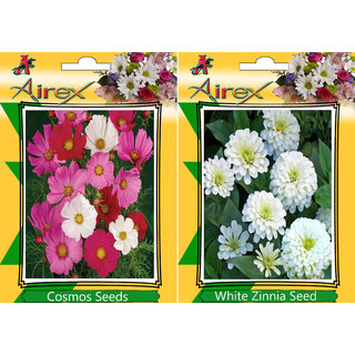 Flower Seeds By Airex Portulaca Mixed, Tithonia and Lotus (Summer) Flower Seed (Pack Of 25 Seed * 2 Per Packet) + 20 Lotus Seed