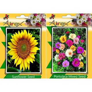 Tithonia (Summer) Flower Seed (Pack Of 25 Seed Per Packet) BY AIREX