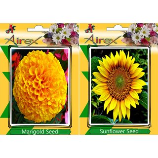 Airex Marigold and Sunflower Flower Seed (Pack Of 25 Seed * 2 Per Packet)