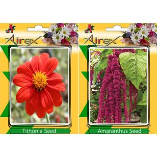 Airex Tithonia and Red Amaranthus (Summer) Flower Seed (Pack Of 50  Seed * 2 Per Packet)