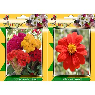 Airex Cockscomb and Tithonia (Summer) Flower Seed (Pack Of 25 Seed * 2 Per Packet)