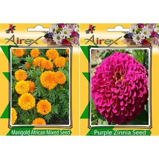 Flower Seeds By Airex Marigold African Mixed and Purple Zinnia (Summer) Flower Seed (Pack of 50 Seed * 2 Per Packet)