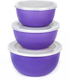 MICROWAVE SAFE PLASTIC COATED U-BOWL 14/16/18 CMPURPLE (SET OF 3)