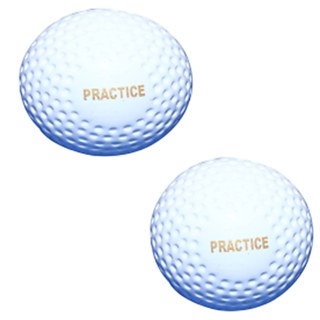 ARYANS Practices Superior Quality Hockey Turf Balls (Pack Of 2)