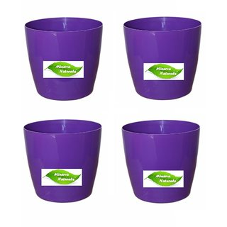 6'' table top pot ( Purple color) PACK OF 4 - Minerva Naturals