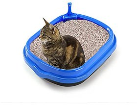 Jumbo Size Litter Tray cum Potty Training with Scoop for Cat / Kitten / Puppy / Rabbit / Guinea Pig / Ferret (Blue)