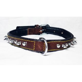 Petshop7 - Export Quality Genuine Leather Dog Collar with Spiked 1 in - Medium -Brown