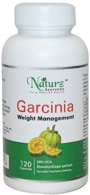 Naturz Ayurveda Garcinia 120 capsules