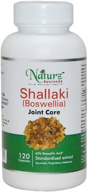 Naturz Ayurveda Shallaki 120 capsules