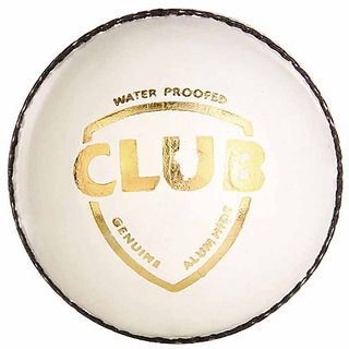 SG Club Leather Ball (White)