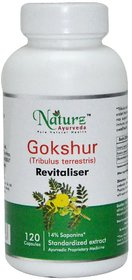 Naturz Ayurveda Gokhru Tribulus terrestris -120 count - 350 mg Natural Renal Support for adults