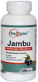 Way2herbal Jamun seeds, 425 mg  capsules - 120 counts - Sugar balance support