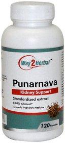 Way2herbal Boerhavia diffusa Punarnava, 350 mg capsule, 120 count - kidney rejuvenation
