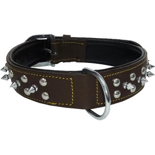 Petshop7 - Export Quality Genuine Leather Dog Collar with Spiked 1.50in - Xtra Large -Green