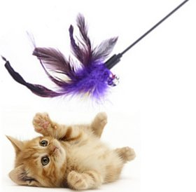 50 cm Pet Cat Toy / Feather Teaser Stick / Training Toy for Cat / Kitten / Puppy ( 1 Pcs)