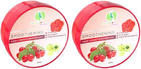 Sreyansh Healthcare Smoothening Hair Conditioning Mask Combo 2 (400 g)