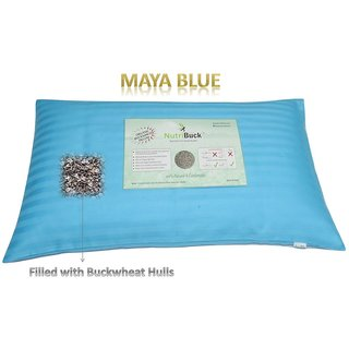 NutriBuck Organic Buckwheat Pillow 4.5 lbs Size 15 x 25 Relieve in Snoring, Neck Pain and Back Pain. Free Delivery (Maya Blue)