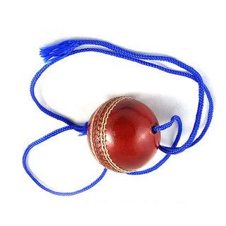 Cricket Hanging Ball Cricket Practic