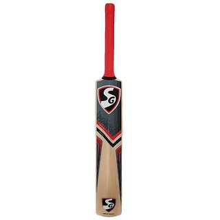 SG Kashmir Willow Cricket Bat (Color May Vary)
