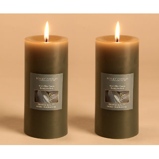 Hosley Set of 2 Eucalyptus Mint 6Inchs Pillar Candles
