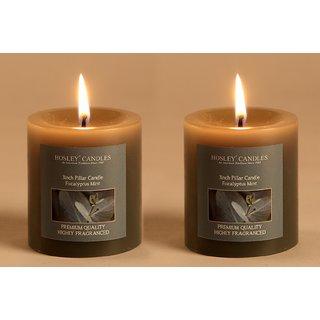 Hosley Set of 2 Eucalyptus Mint 3Inchs Pillar Candles