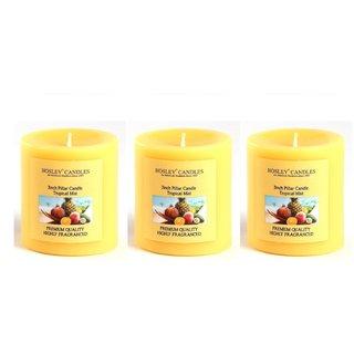 Hosley Set of 3 Tropical Mist 3Inchs Pillar Candles