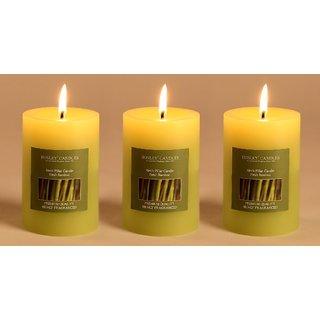 Hosley Set of 3 Fresh Bamboo 4Inchs Pillar Candles