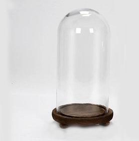 big brown base bell jar