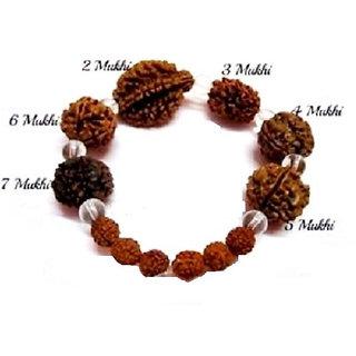 Rudraksha Rudraksh 2 3 4 5 6 7 Mukhi Face Beads Mala Wrist band bracelet