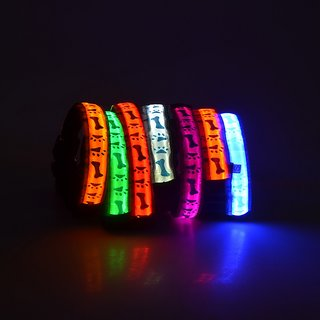 Led Dog Collar Large