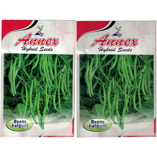 Annex  Beans Vegetable Seeds Pack Of 2
