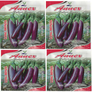 Annex Egg Plant Vegetable Seeds Pack Fo 4