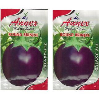 Annex Brinjal Vegetable Seeds Pack Of 2