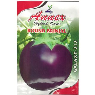Annex  Brinjal Vegetable Seed