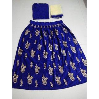 Designer Blue Color Velvet Material Lehengha choli (MSTNBLUE)