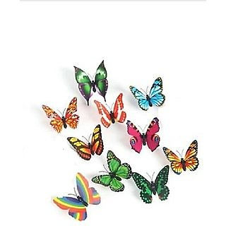 Multicolour butterfly