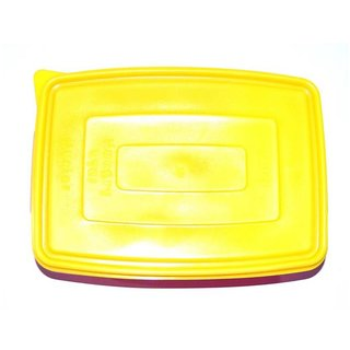 Pin to Pen Junior 2 Compartment Lunch Box Regular Girls Series 1 Containers Lunch Box (250 ml)
