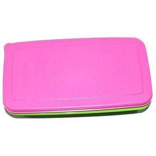 Pin to Pen Compact Lunch Box, Microwavable 2 Containers Lunch Box (310 ml)