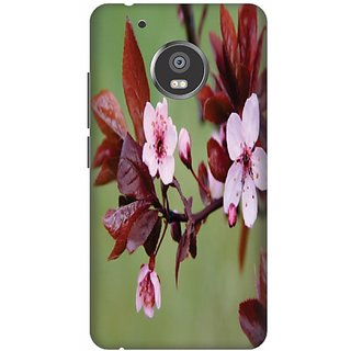 Printland Back Cover For Moto G5 Plus