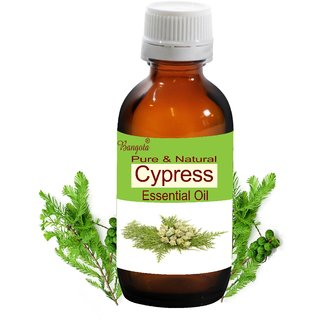 Cypress Oil -  Pure & Natural  Essential Oil (100 ml)