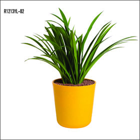 Sereno Bello Plastic Flower Pot Round Planter (12 x 13)  in  Yellow finish (Garden flower pots / Artificial plants)