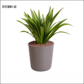 Sereno Bello Plastic Flower Pot Round Planter (12 x 13)  in  Brown finish (Garden flower pots / Artificial plants)