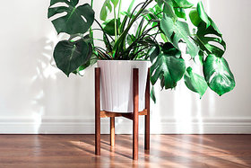 Modern Plant Stand, Hand Made in india, Home Decor (rust free and strong ) long life@!! Ships Worldwide From India !!