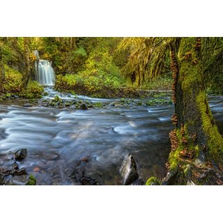 Avikalp Exclusive AZOHP2668 Gifford Pinchot National Forest National Park And Lewis County Washington Full HD Poster Latest Best New 3D Look Beautiful