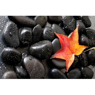 Avikalp Exclusive AZOHP2678 Gorgeous Black Stones Red Autumn Leaf Full HD Poster Latest Best New 3D Look Beautiful
