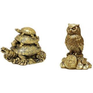 Astro Guruji  fengshui owl and 3 Tier Tortoise  combo