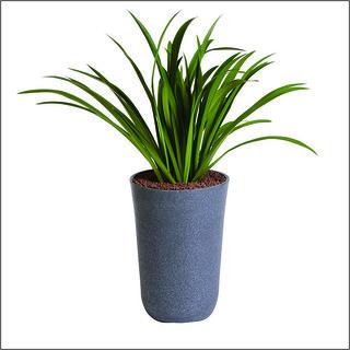 Sereno Bello Plastic Flower Pot Round Planter (13 x 20)  in Dark Grey Stone Finish (Home Decor Planters)