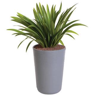 Sereno Bello Plastic Flower Pot Round Planter (13 x 20)  in Grey finish (Garden flower pots / Artificial plants)