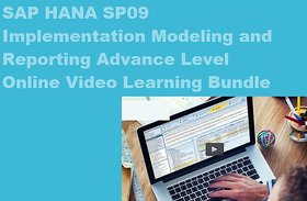 SAP HANA SP09 IMPLEMENTING & REPORTING ONLINE VIDEO LEARNING EBOOKS SET