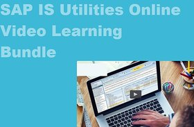 Sap Is Utilites Online Video Learning Ebooks Set
